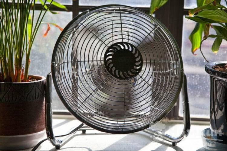 Как охладить квартиру в жару без кондиционера на несколько градусов