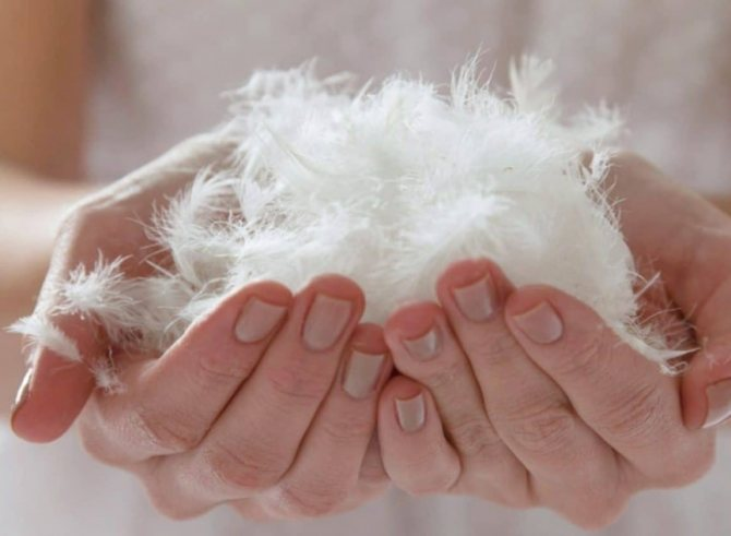 Как стирать подушки в стиральной машине, чтобы их не испортить