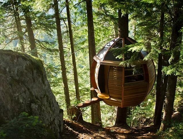 Строим дом на дереве! Этапы возведения, безопасность, эксплуатация