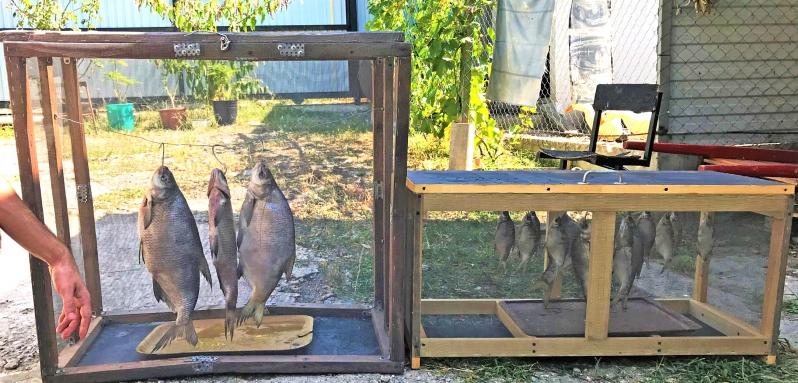 Рыбаки дают советы, как солить и вялить рыбу в условиях частного дома и квартиры