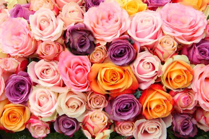 Какие цветы подарить маме на день рождения. Советы Фото вариантов