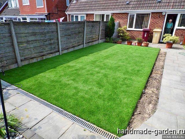 Какую траву посадить для газона на даче