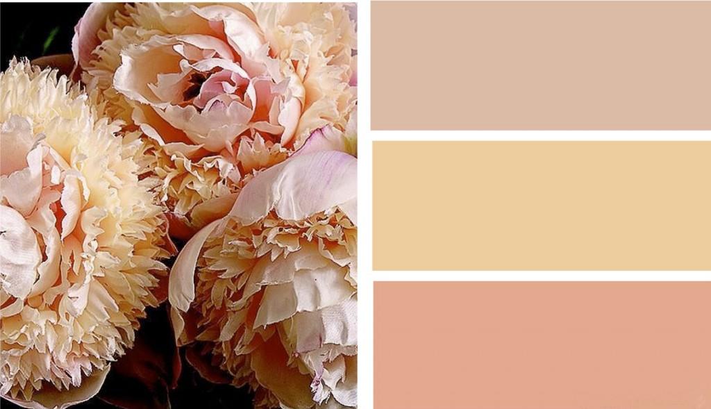 Какие смешать краски для получения персикового цвета
