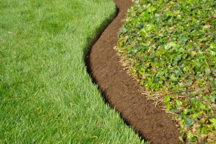 Как посадить газон: инструкция для новичка