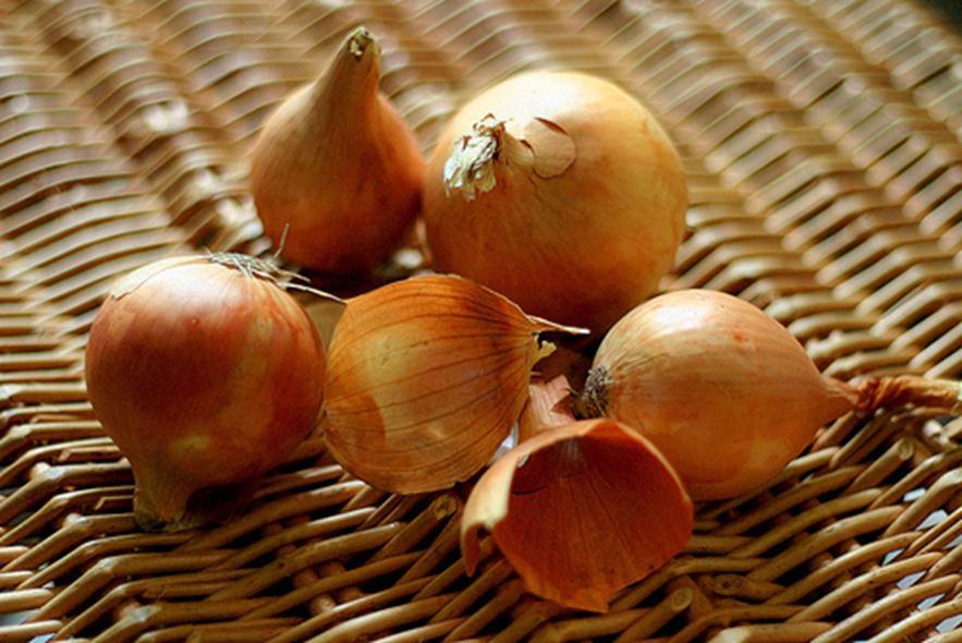 Луковая шелуха и ее применение при выращивании садовых, огородных и комнатных культур