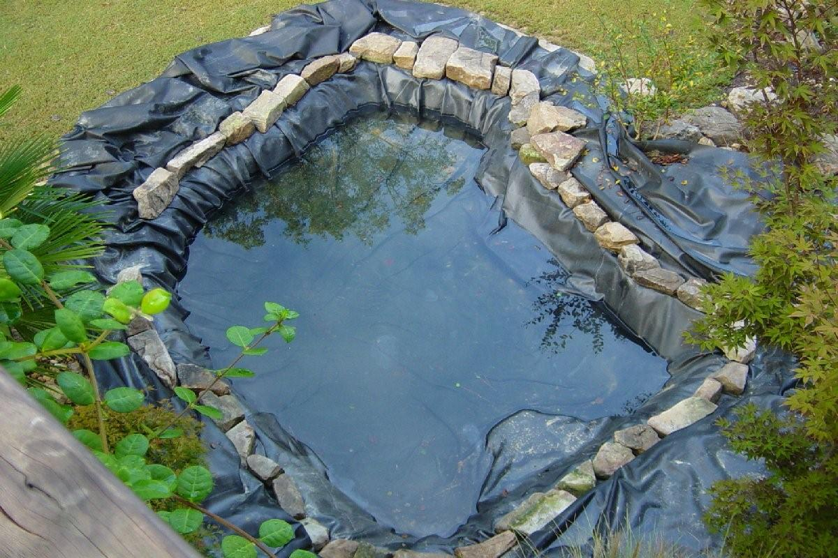 Прудик в саду; и на на дачном участке как делать своими руками; фото маленьких водоемов из ванной и покрышки