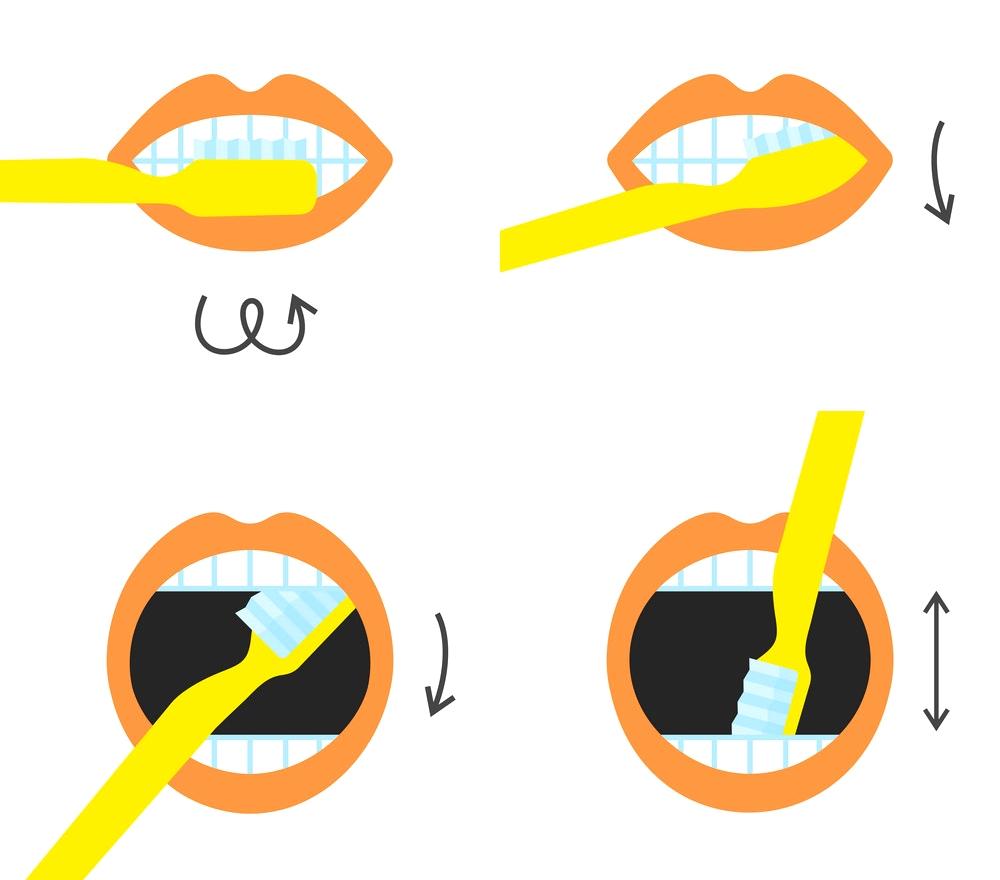 Что можно сделать из старых зубных щёток