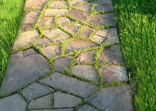 Тротуарная плитка своими руками: как правильно изготовить