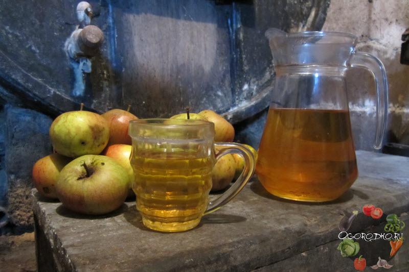 Кальвадос в домашних условиях из яблок – рецепт и технология приготовления