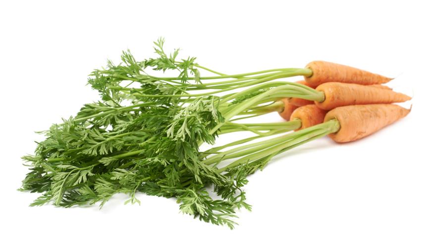 10 продуктов, из которых можно вырастить зелень дома