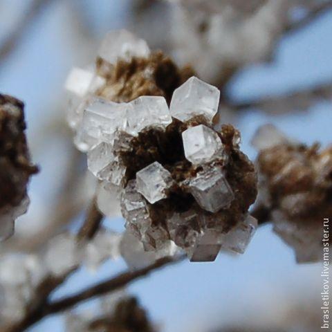 О выращивании кристаллов в домашних условиях