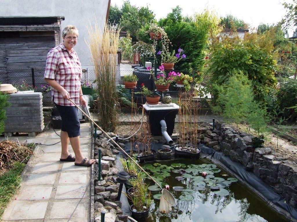 Выбираем средства для очищения пруда на даче