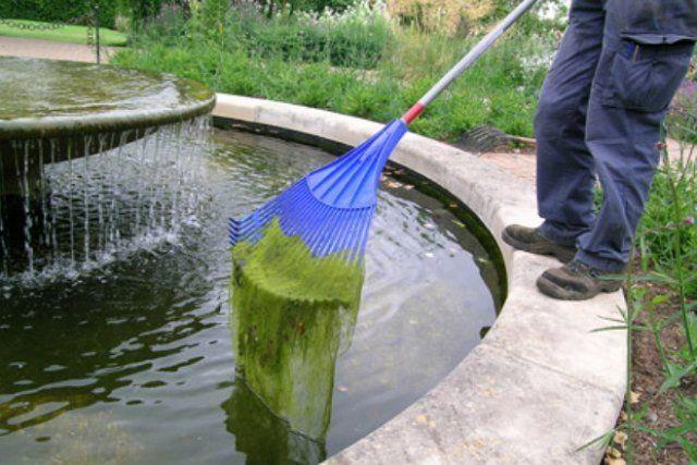 Очистка пруда
