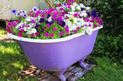 Советы по оформлению цветников и клумб своими руками