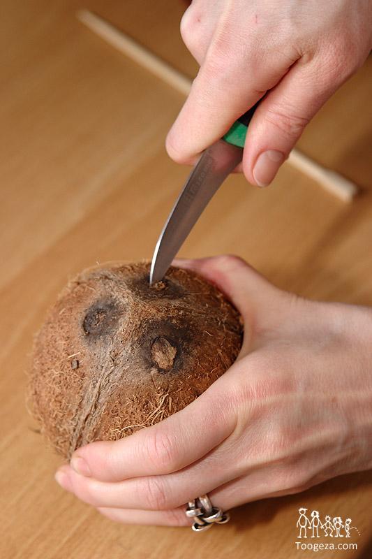 Как мы открывали кокосовый орех