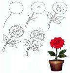 Учимся рисовать красивую розу: инструкции для юных художников