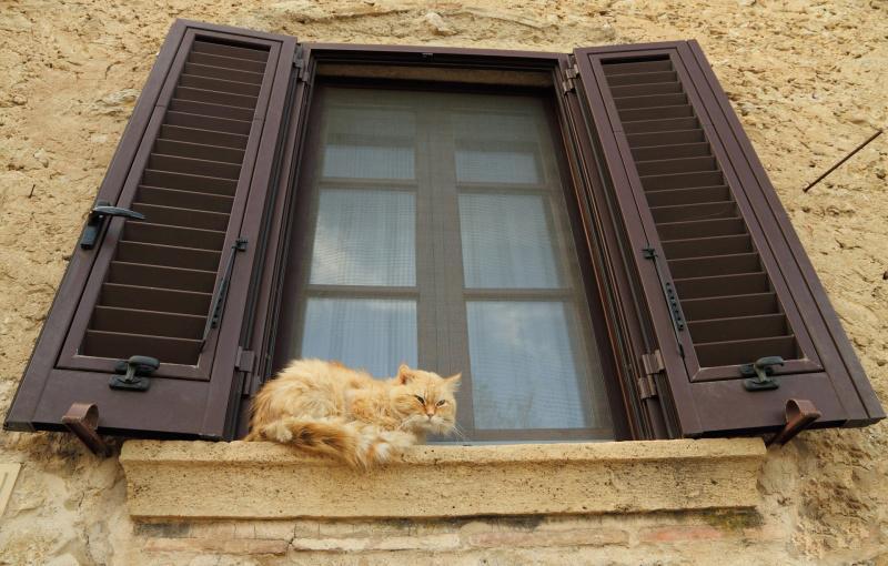 Москитная сетка на деревянное окно своими руками: виды. Установка сетки без каркаса и на рамке