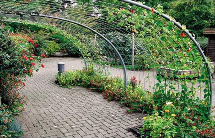 Зонирование дачного участка и огорода. Цели зонирования, ключевые зоны, этапы проведения зонирования, способы 2021 года (с фото)