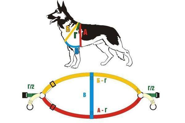 Как сделать удобную шлейку для собаки своими руками