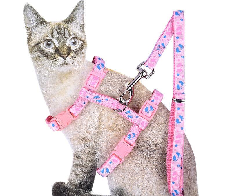 Шлейка для кошки своими руками, выкройка и фото: как сделать кошачий поводок в домашних условиях