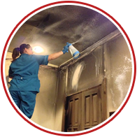 Эффективные способы избавиться от запаха краски после ремонта
